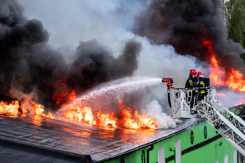 Pożar w firmie produkującej opakowania w Poznaniu wybuchł w niedzielę rano /PAWEL F. MATYSIAK/POLSKA PRESS /East News