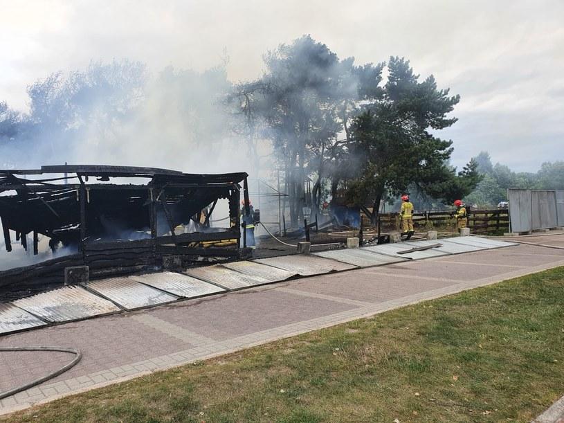 Pożar w Gdańsku /KM PSP Gdańsk /materiały prasowe