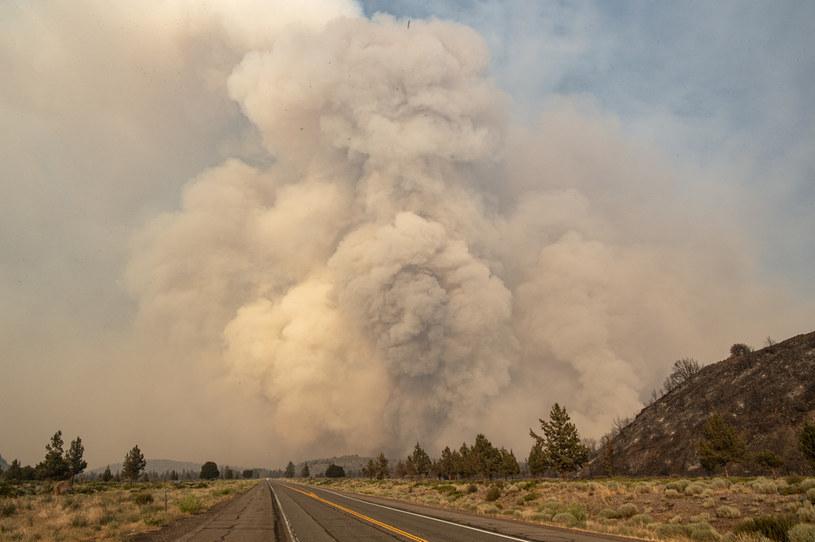 Pożar w Kalifornii, zdj. ilustracyjne /Josh Edelson / AFP /AFP