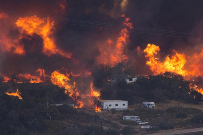 Pożar w Kalifornii /AFP