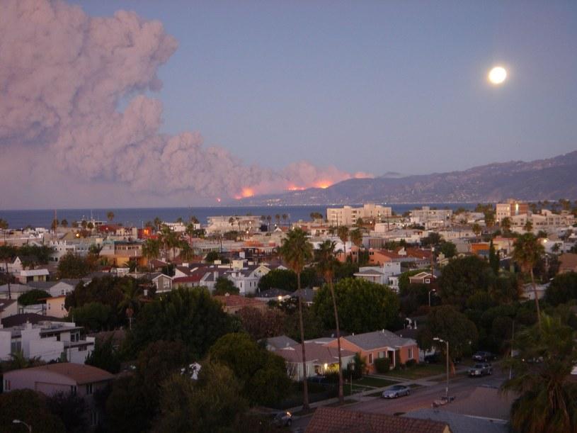 Pożar w Kalifornii /Gauss Ulrike /East News