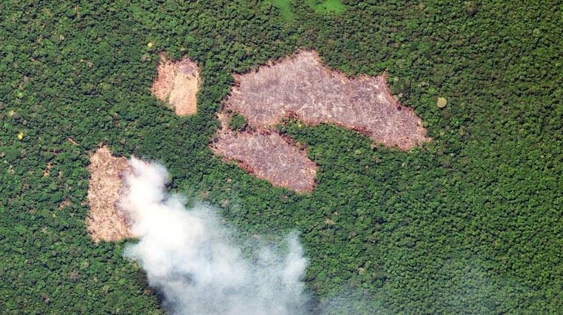 Pożar w Kolumbii /Handout /AFP