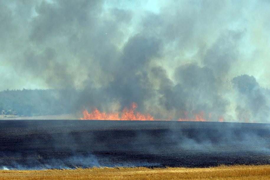 Pożar w Kosobudach / Marcin Bielecki    /PAP