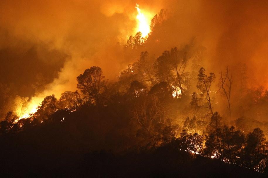 Pożar w mieście Calistoga w Kalifornii /JOHN G. MABANGLO /PAP/EPA