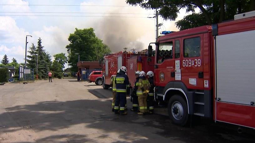 Pożar w Przysiece Polskiej /Polsat News