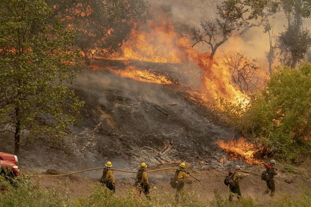 Pożar w San Bernardino National Forest /AFP PHOTO / Kyle Grillot /PAP/EPA