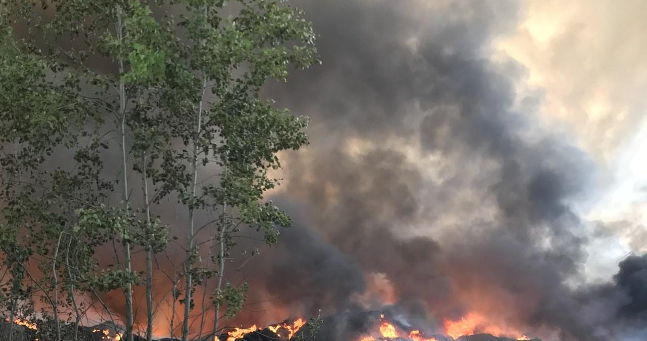 Pożar w Trzebini. W ogniu stanęło składowisko opon