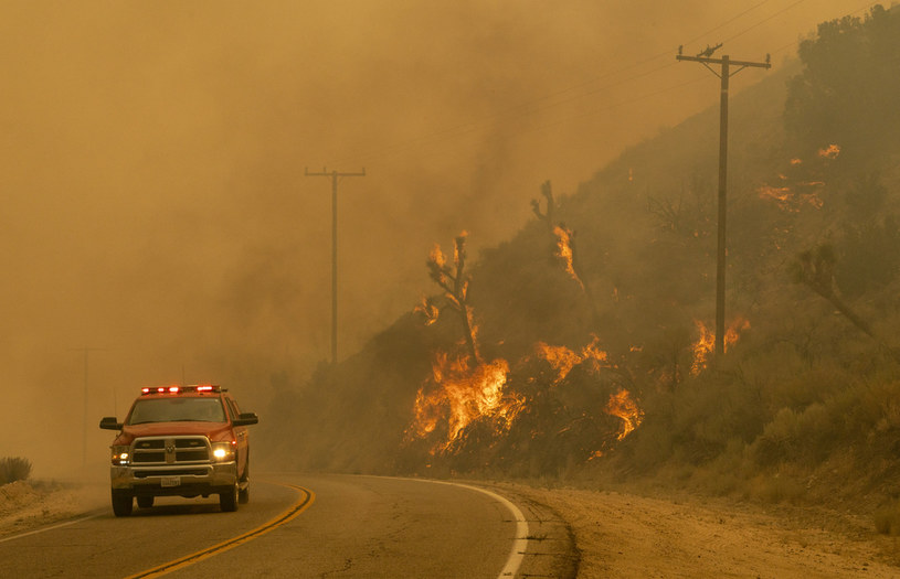 Pożar w USA, zdj. ilustracyjne /AFP
