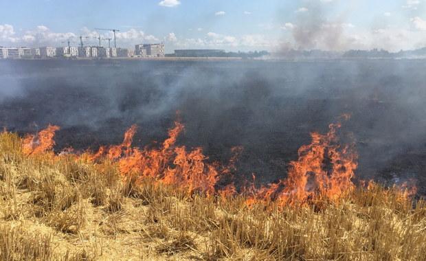 Pożar we Wrocławiu, Kłęby dymu widoczne z daleka