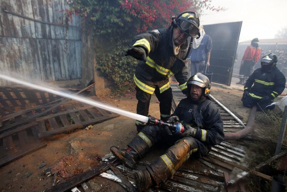 Pożar wybuchł w sobotę po południu na podmiejskich wzgórzach /Felipe Trueba /PAP/EPA