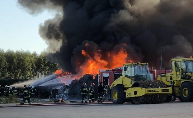 Pożar wysypiska śmieci pod Sulechowem. W akcji 11 zastępów straży