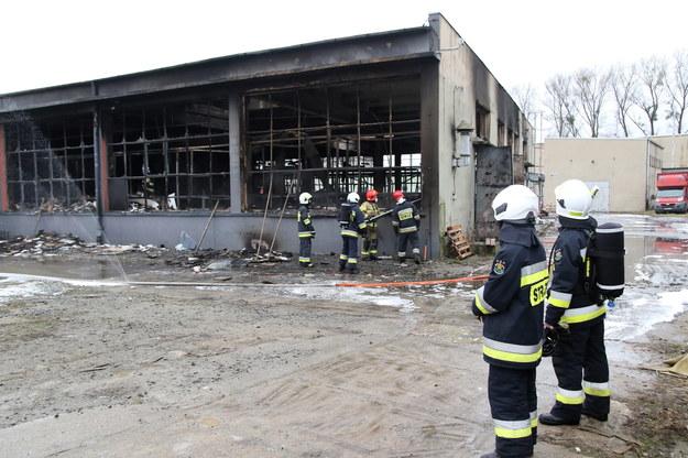 Pożar zakładu meblarskiego w Głuszynie pod Namysłowem /Krzysztof Świderski /PAP