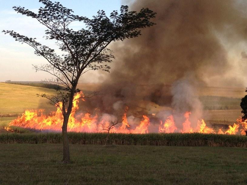 Pożar; zdj. ilustracyjne /123RF/PICSEL