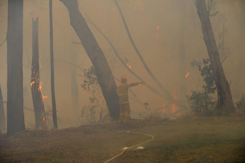 Pożar /PAP/EPA