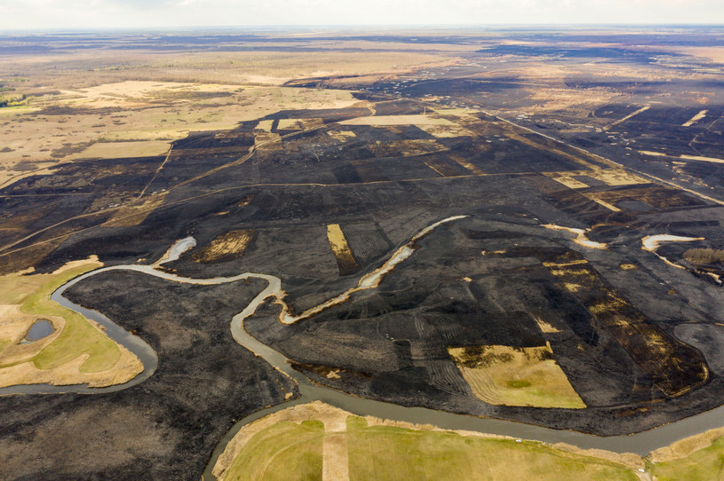 Pożarem było objętych ponad 5 tysięcy hektarów /MAREK MALISZEWSKI/REPORTER /East News