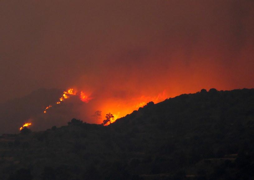 Pożary lasów na Cyprze /PAP/EPA/KATIA CHRISTODOULOU /PAP