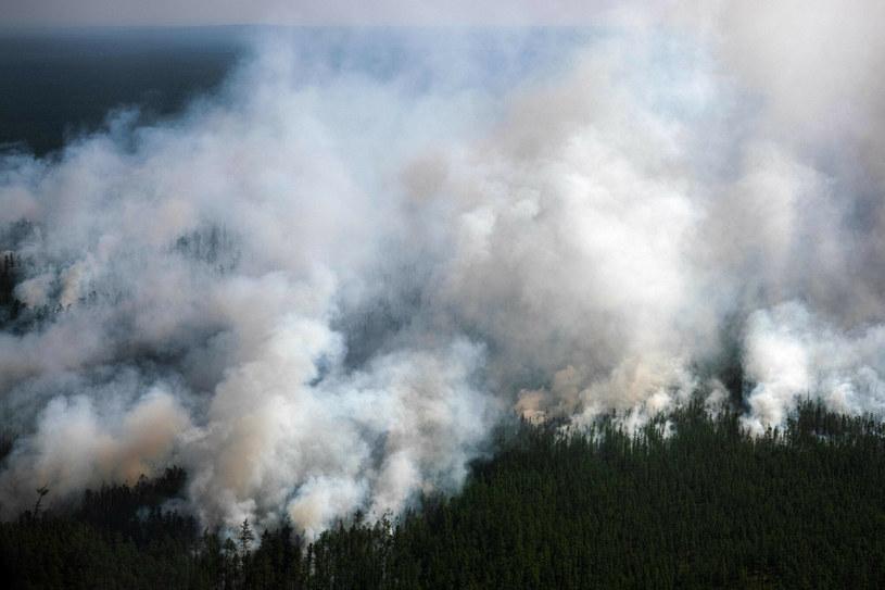 Pożary lasów na Syberii /DIMITAR DILKOFF/AFP/East News /East News
