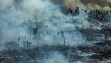 Pożary lasów w Amazonii. 44 tys. żołnierzy oddelegowanych do walki z żywiołem
