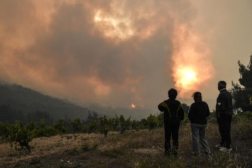 Pożary lasów w Grecji /AFP