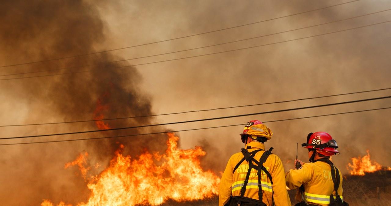 Pożary lasów w Kalifornii. Zginęło co najmniej 10 osób