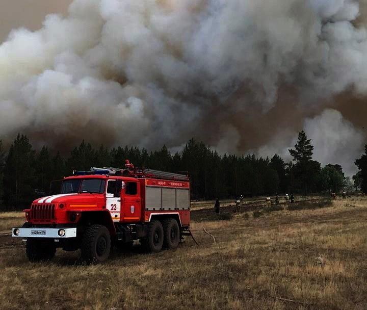 Pożary lasów w obwodzie czelabińskim /PAP/EPA /PAP