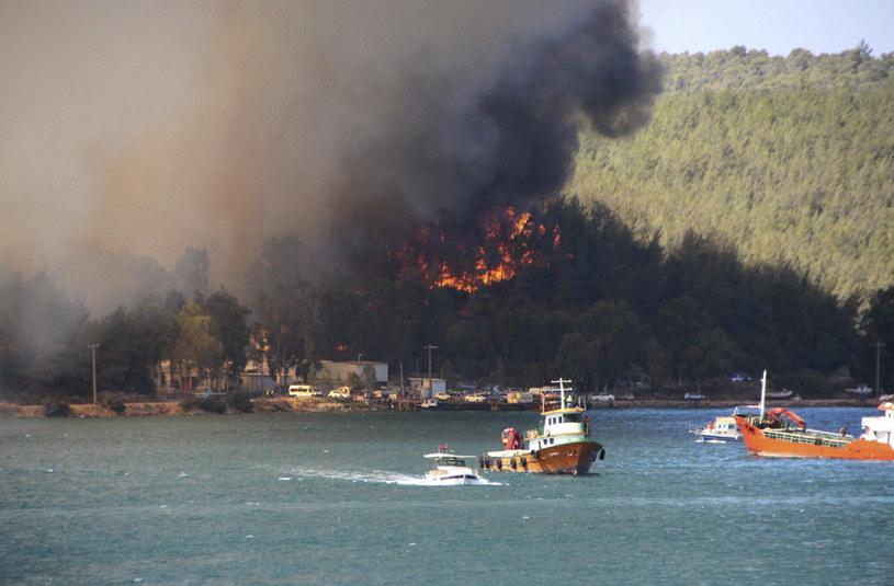 Pożary lasów w turystycznym kurorcie Bodrum w Turcji /IHA/Associated Press /East News