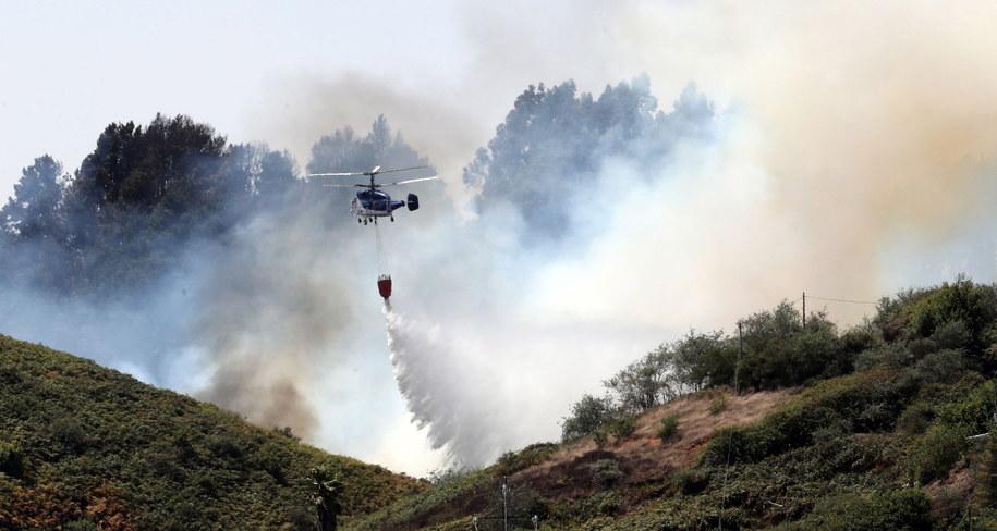 Pożary na Gran Canarii /Elvira Urquijo A. /PAP/EPA
