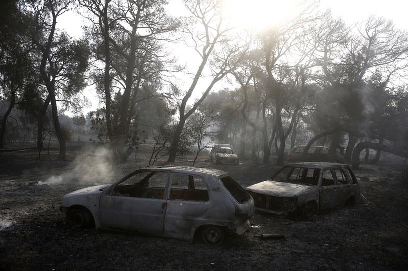 Pożary na północy Aten /YANNIS KOLESIDIS /PAP/EPA
