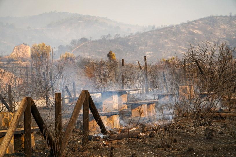 Pożary na południ Hiszpanii /Antonio Paz /PAP