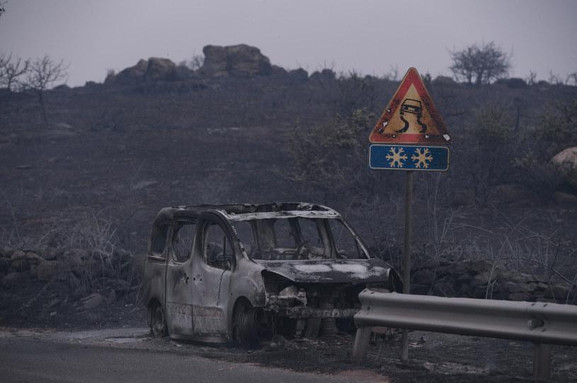 Pożary na Sardynii to konsekwencja zmian klimatycznych / Emanuele Perrone/Getty Images /Getty Images