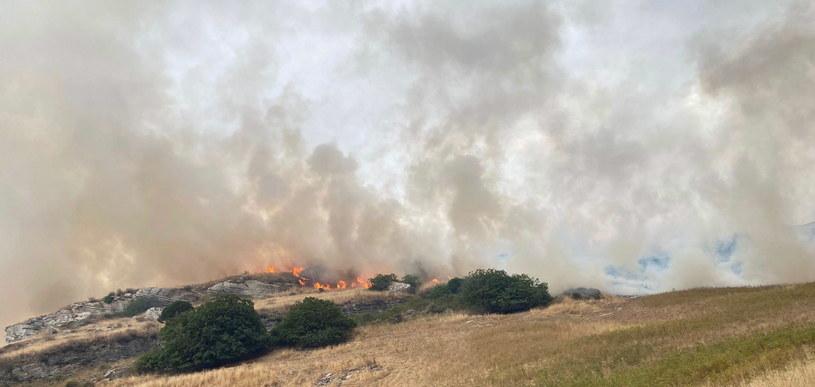 Pożary na Sardynii /PAP/EPA/FABRIZIO FOIS /PAP
