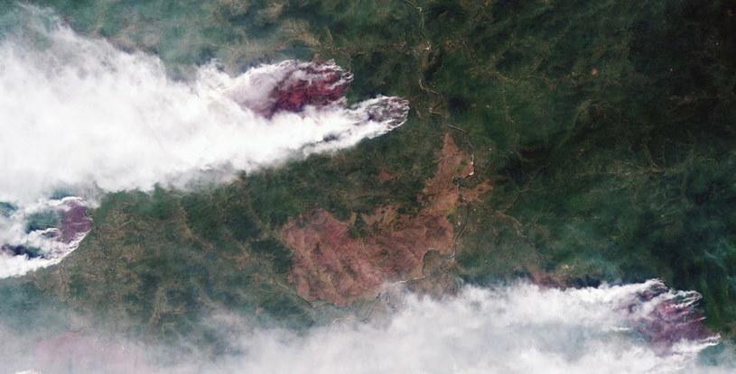 Pożary na Syberii objęły niemal 2,8 miliona hektarów lasów /ROSCOSMOS / HANDOUT /PAP/EPA