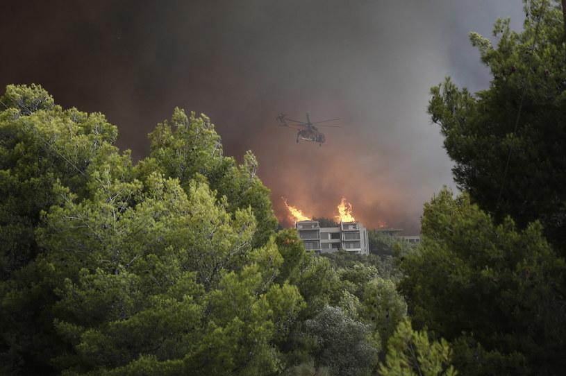 Pożary w Grecji /ALEXANDROS VLACHOS /PAP/EPA