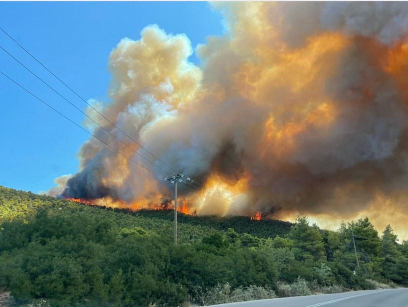 Pożary w Grecji /Państwowa Straż Pożarna /Twitter
