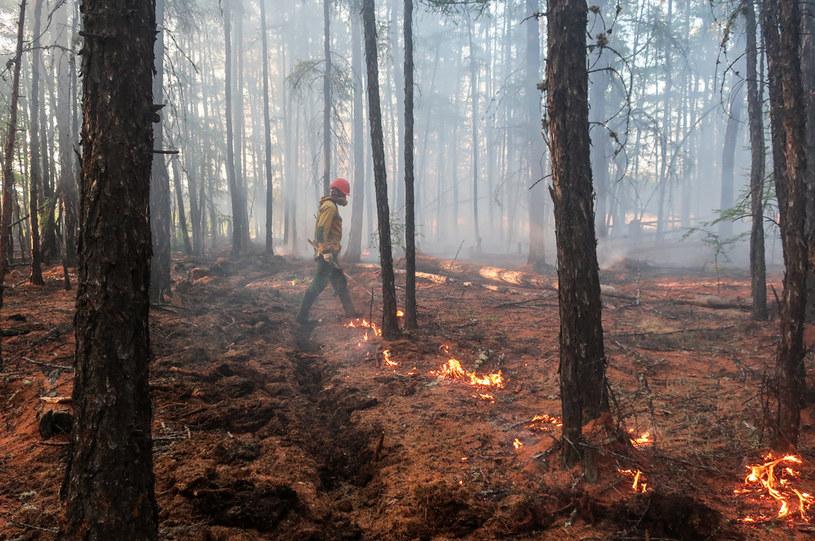 Pożary w Jakucji /Yevgeny Sofroneyev\TASS /Getty Images