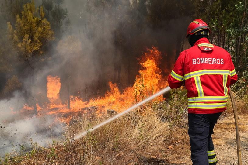 Pożary w Portugalii /PAULO NOVAIS /PAP/EPA