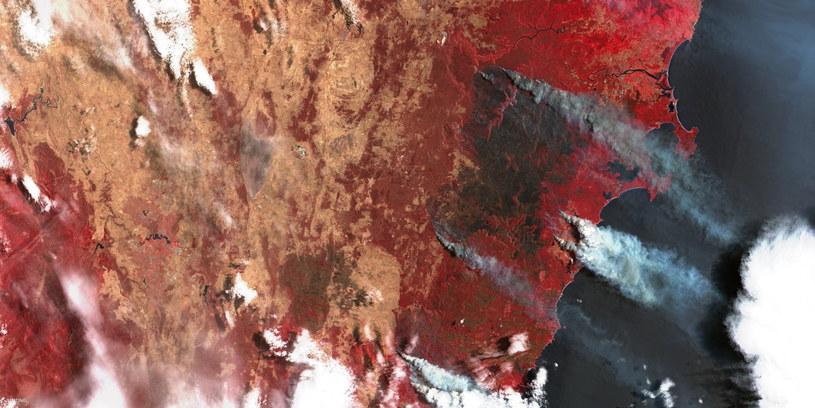 Pożary w regionie położonym ok 100 km na południe od Sydney - (sztuczne kolory) - satelita Sentinel-2 / Credits - Komisja Europejska, Copernicus, Sentinel Hub /Kosmonauta