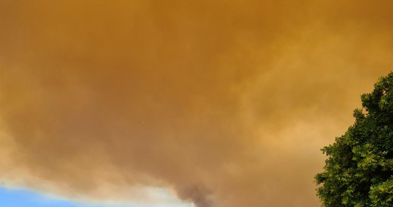 Pożary w Turcji