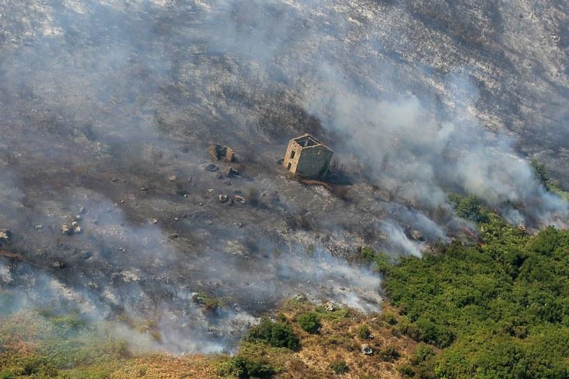 Pożary we Francji / zdj. ilustracyjne /AFP