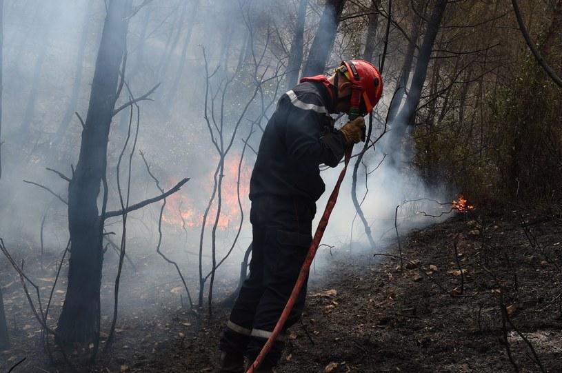 Pożary we Francji /AFP