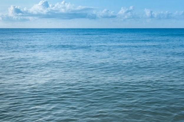 Poziom wód szybko się podnosi /123RF/PICSEL