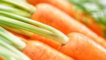 Poznaj różne odsłony marchewki!