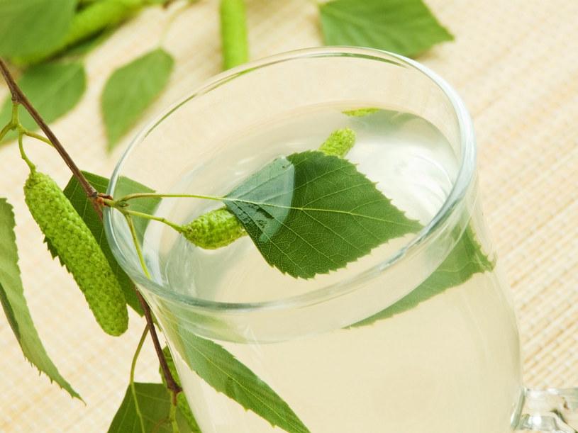 Poznaj różnice między sokiem z brzozy, a wodą brzozową /123RF/PICSEL