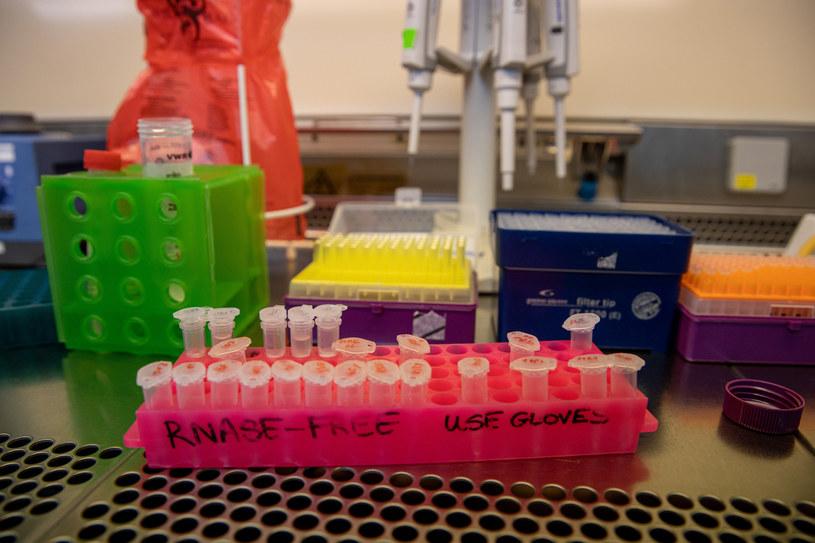 Poznań, Instytut Chemii Bioorganicznej Polskiej Akademii Nauk. W laboratorium wykonuje się testy na obecność koronawirusa /Jakub Walasek/REPORTER /East News