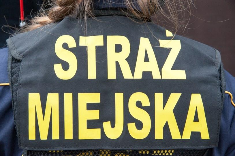 Poznań: Straż miejska ściga za przekleństwo na Facebooku (zdj. ilustracyjne) /Artur Zawadzki /Reporter