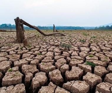 Pozostało tylko 10 lat na powstrzymanie negatywnych zmian klimatu