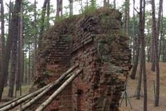 Pozostałości dawnej Łeby w obiektywie
