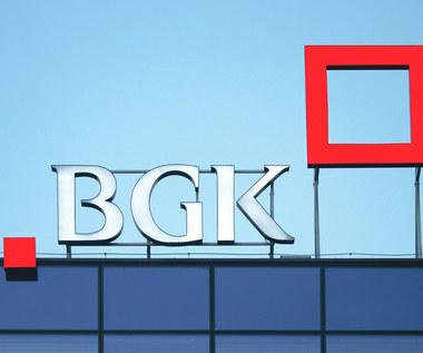 Pożyczki płynnościowe BGK: Nowa transza pieniędzy w lipcu