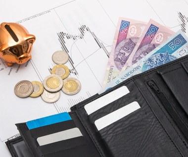 PPK daje dwa razy więcej, niż dostaje. Jak wyglądają pracownicze plany kapitałowe po dwóch latach?