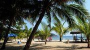 Praca na rajskiej wyspie? Czemu nie